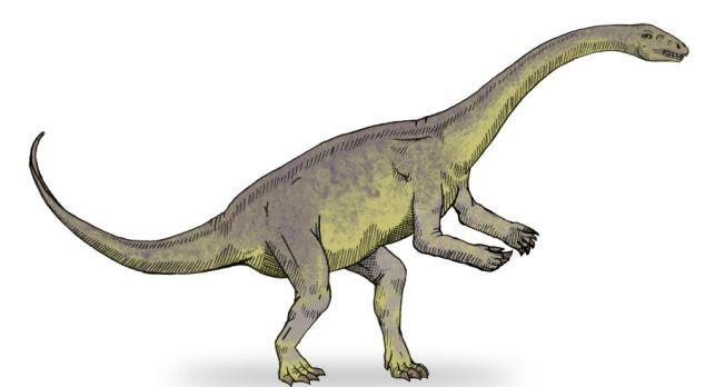 Lufengosaurus — травоядные ящеры с длинными шеями, рост которых достигал 9 метров.