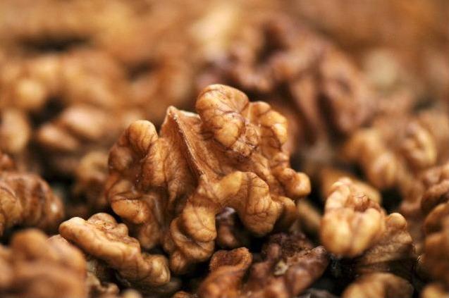 Грецкие орехи улучшают работу мозга