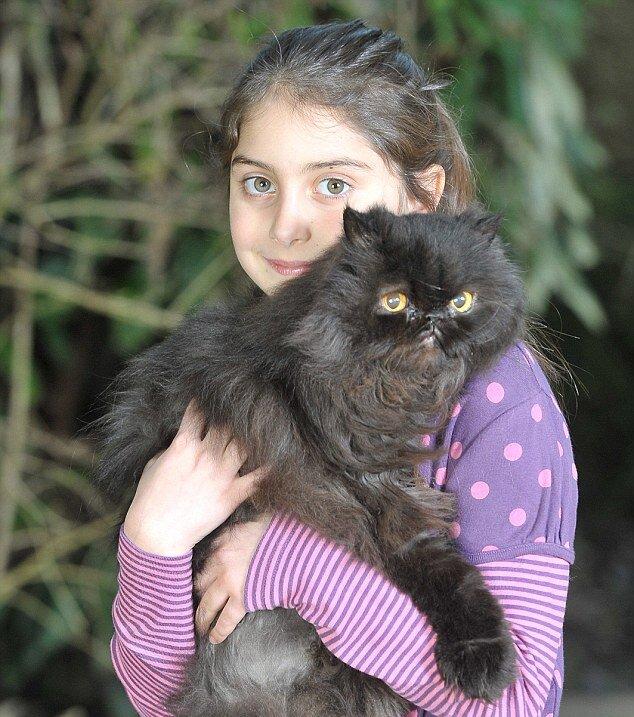 Соседская девочка помогла выходить двуногого кота