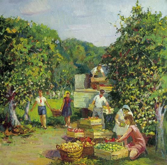 Выращивание помидоров  посадка и уход от А до Я  Сайт о
