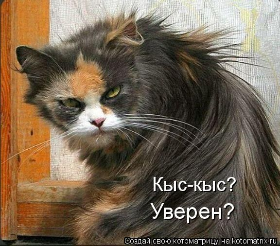 http://bm.img.com.ua/img/prikol/images/large/0/0/165100.jpg