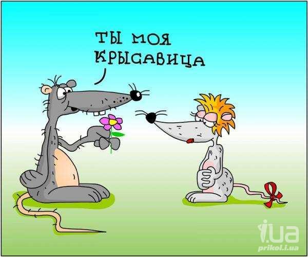 Рис. 3074, добавлено 27.4.2012. Похожие темы: карикатуры жующих