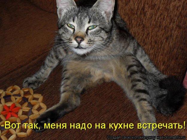 http://bm.img.com.ua/img/prikol/images/large/0/5/147050_253157.jpg