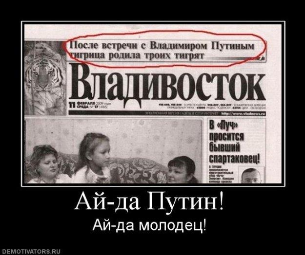 Мустанг выставил на благотворительный аукцион доказательство причастности к покраске звезды в Москве - Цензор.НЕТ 6543