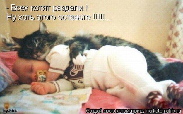 Котоматриця!)))) - Страница 9 206551_467368