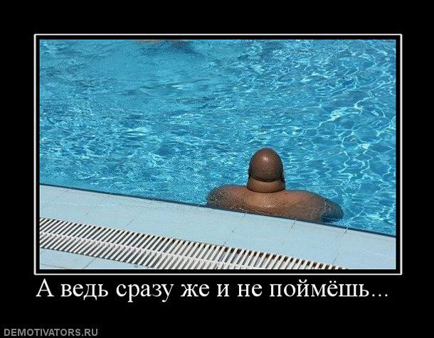 http://bm.img.com.ua/img/prikol/images/large/1/6/148961_258465.jpg
