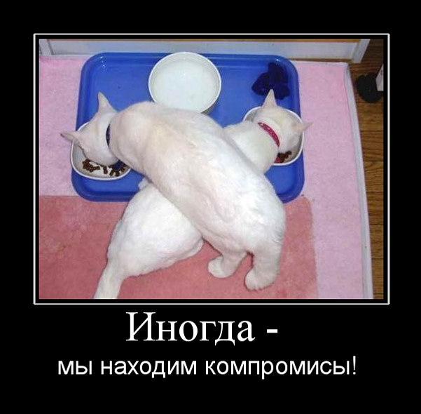 http://bm.img.com.ua/img/prikol/images/large/1/7/160971_292717.jpg