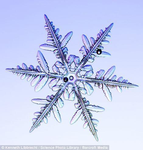 Как выглядят снежинки