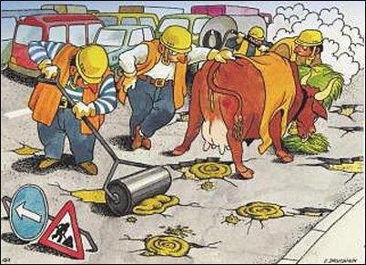У нас две проблемы - ПР и дороги. ФОТОжаберы о состоянии украинских дорог. - Цензор.НЕТ 6141