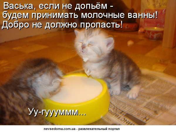 http://bm.img.com.ua/img/prikol/images/large/2/3/144832.jpg