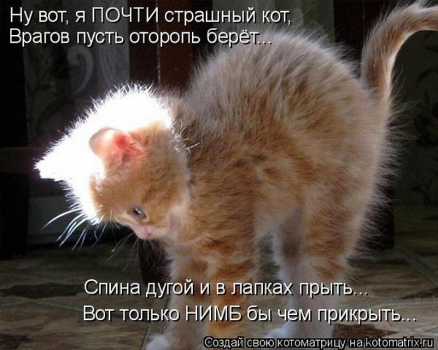 http://bm.img.com.ua/img/prikol/images/large/2/7/172972_346094.jpg