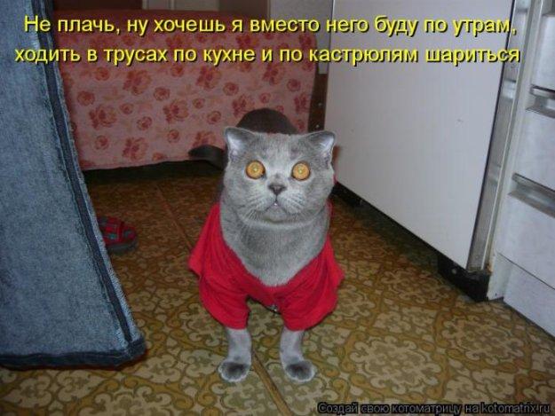Котоматриця!)))) - Страница 10 228982_525400