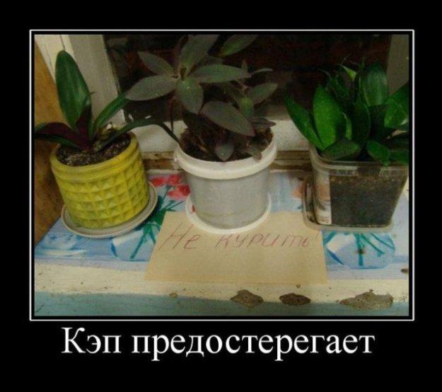 Фото просвечивающих трусиков 29 фотография