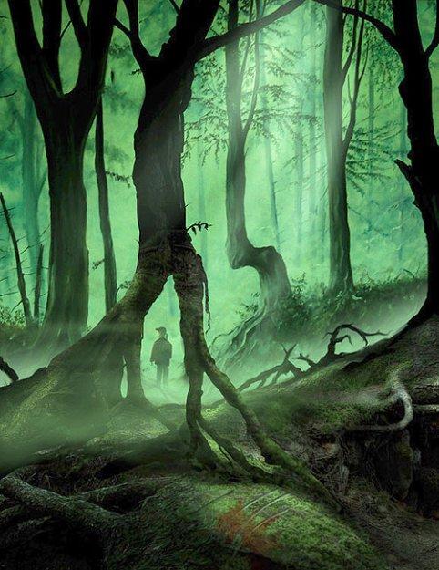 Darek Kocurek