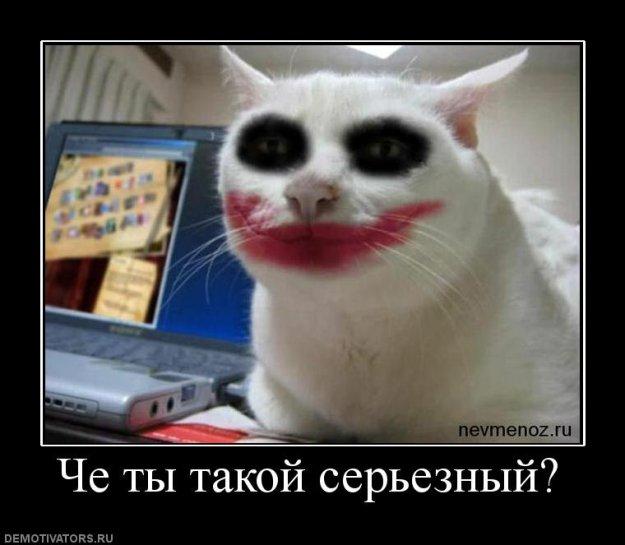 http://bm.img.com.ua/img/prikol/images/large/3/6/164063_305690.jpg