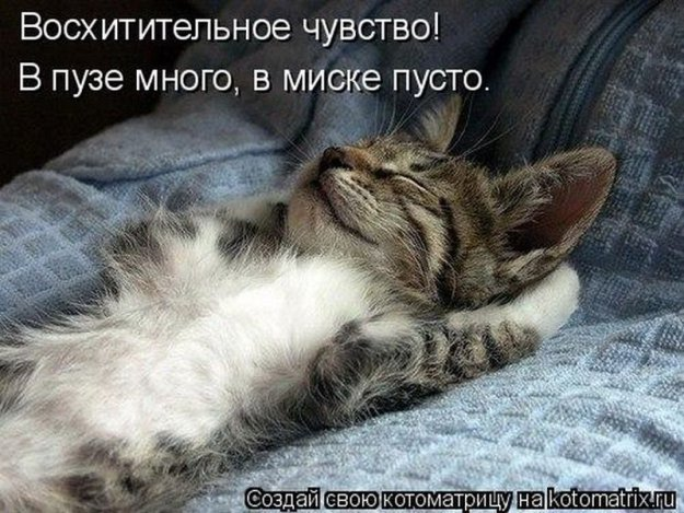 http://bm.img.com.ua/img/prikol/images/large/3/6/216063_487785.jpg