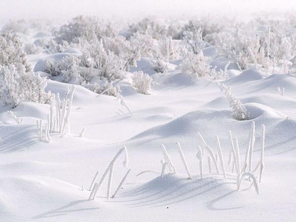 Зимняя подборка