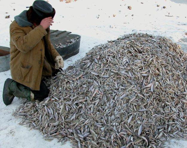 Необычное видео приколов на рыбалке - YouTube
