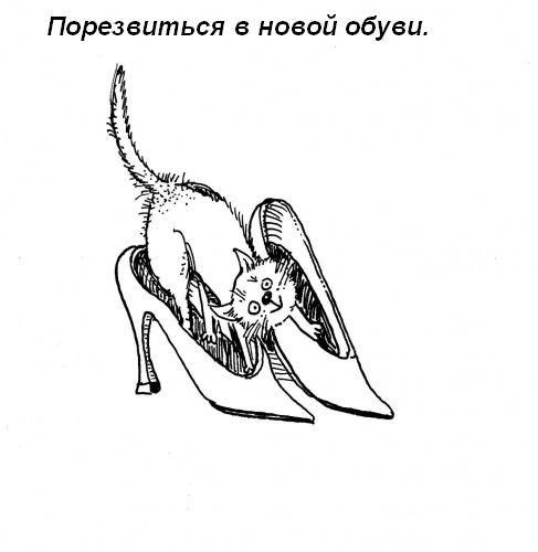 Обязанности котов в доме