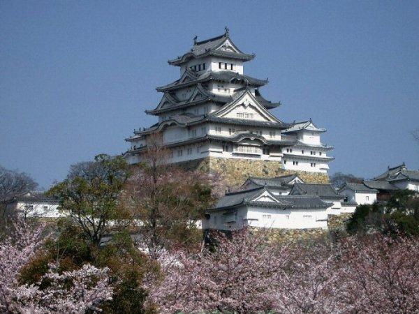 13 япония парк императорского дворца