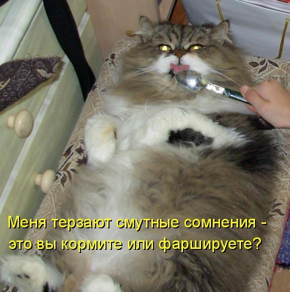 http://bm.img.com.ua/img/prikol/images/large/5/9/172195_341566.jpg