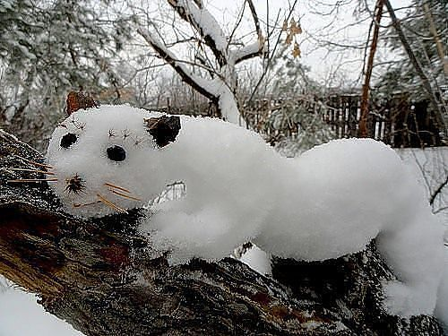 (-: Улыбки уходящей зимы :-)