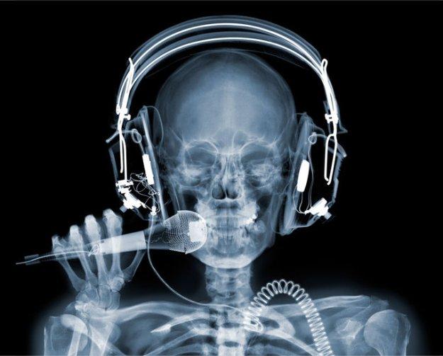 Рентгеновские фото от Nick Veasey
