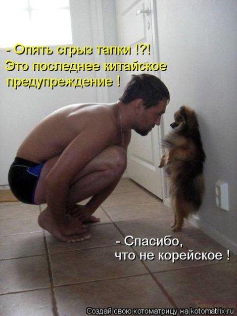 Котоматриця!)))) - Страница 10 226676_517620
