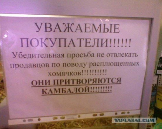 Прикольные объявления (79 фото) - Разное ...: udvniunyvmp.holohovets1.allalla.com/643...