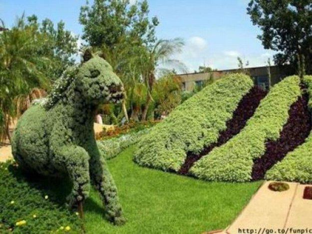 Красивый парк с фигурной стрижкой