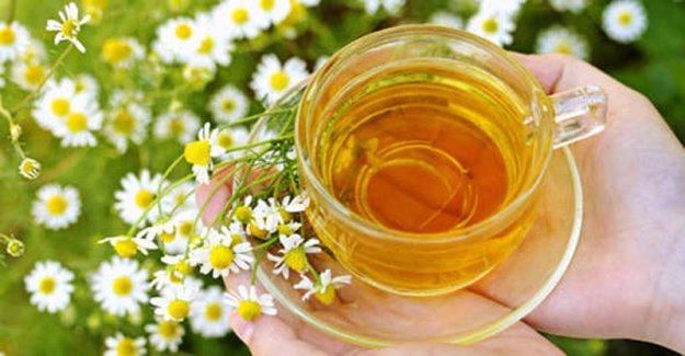 11 целебных напитков от простуды