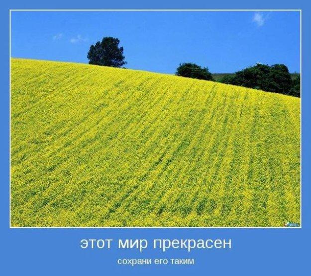 Резюме На Инспектора По Кадрам Образец - фото 10