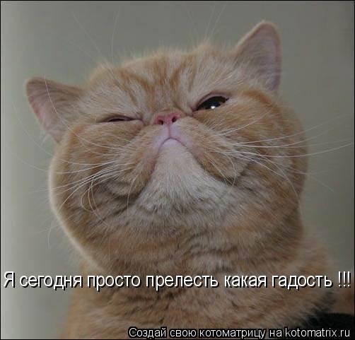 http://bm.img.com.ua/img/prikol/images/large/8/1/131218.jpg