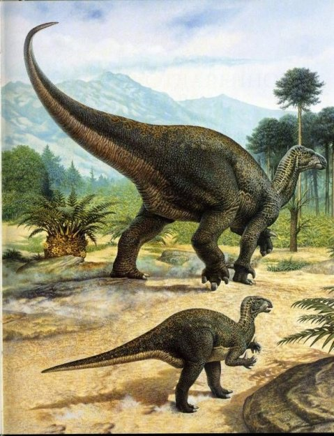 Животный мир :: Рисунки динозавров фото 17.