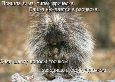 Котоматриця!)))) - Страница 9 210509_475988