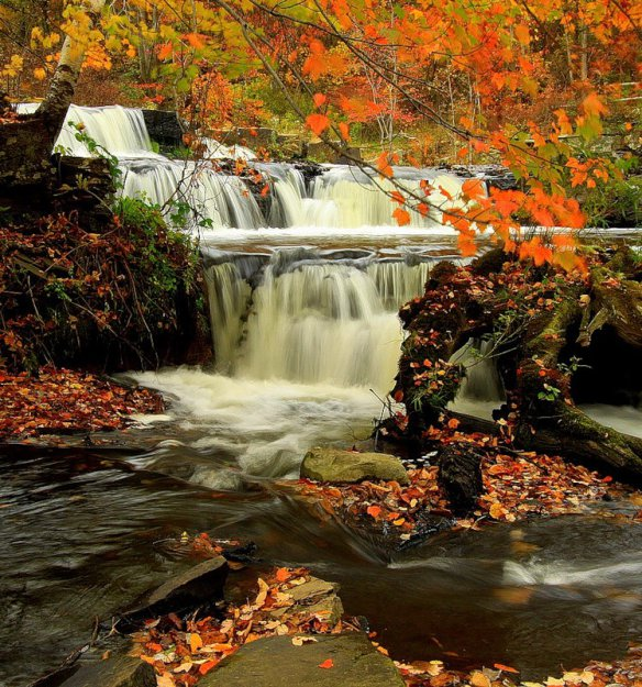 Природа теги природа фото вода автор