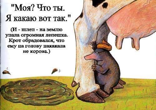 Что делать теленок не может какать