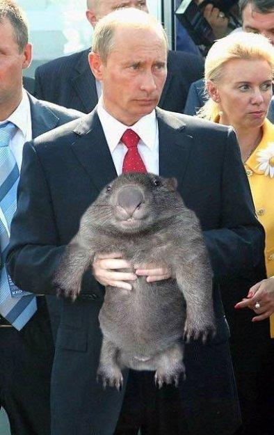 медведев про игры