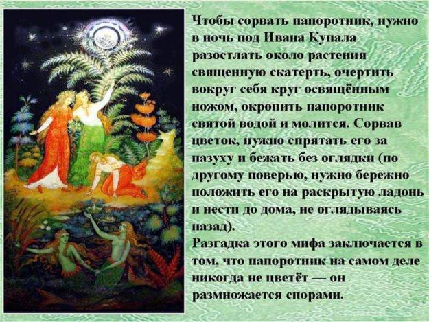 С праздником  Ивана Купала.