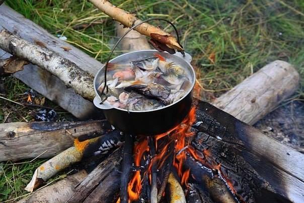 что в ухе рыбацкой хороши
