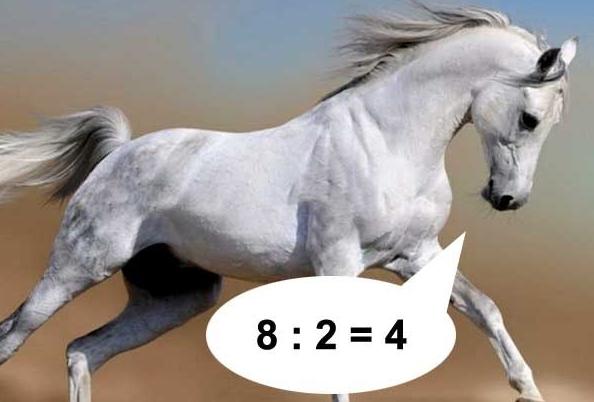 игры мои конь