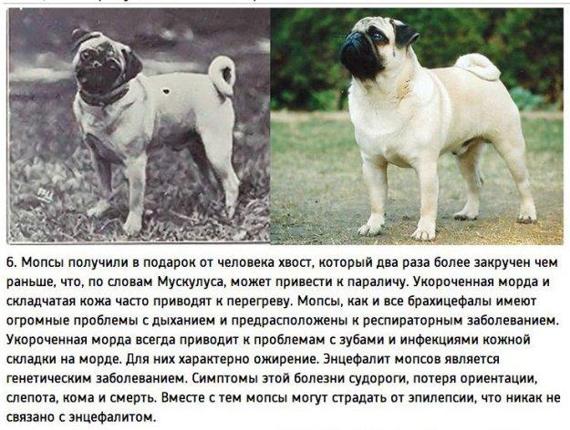 Поумничаем...))