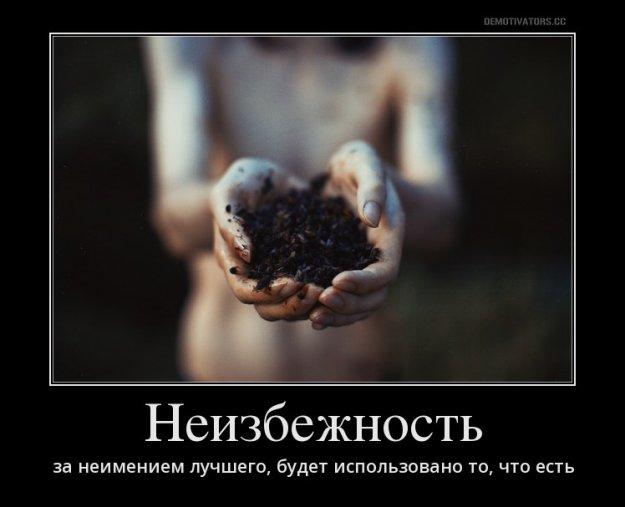 Дуда в Киеве обсудит с Порошенко конкретную помощь Польши Украине, ситуацию на Донбассе и санкции против РФ - Цензор.НЕТ 4221