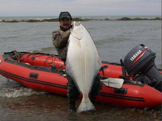 ловля на море с лодки видео