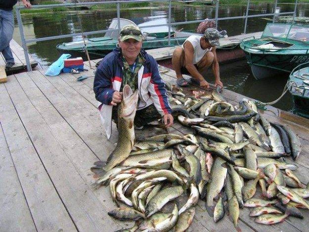 рыбалка на волге астраханская обл