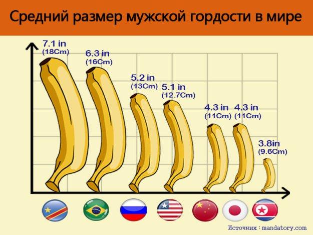 Самый средний размер пениса