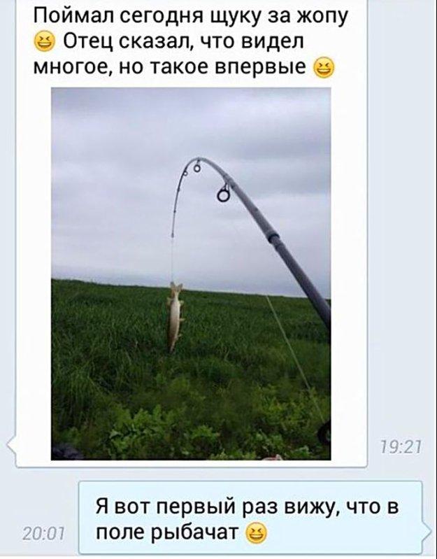 диалоги о рыбалке вики