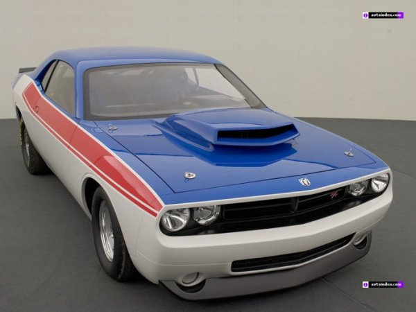 American Muscles 2