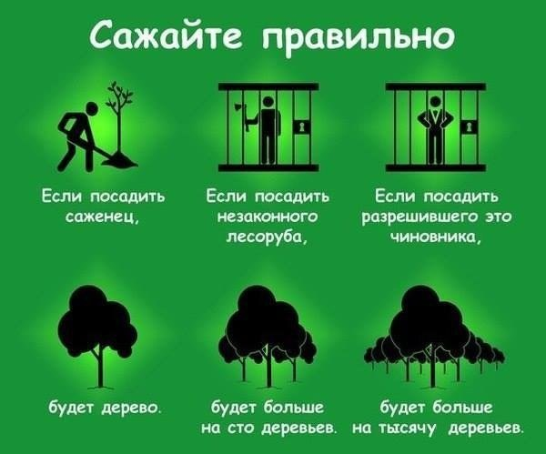 http://bm.img.com.ua/nxs/img/prikol/images/large/4/0/317404_964162.jpg