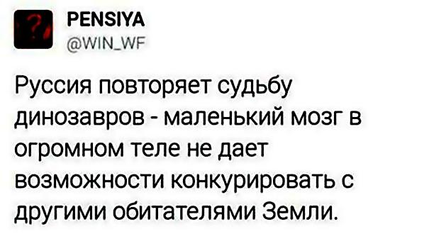"""Среди российских хулиганов во Франции есть пособники боевиков """"ДНР"""", - Independent - Цензор.НЕТ 7858"""